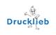 weitere Informationen zu Sanitätshaus Drucklieb GmbH & Co. KG